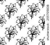 floral seamless pattern of lily ... | Shutterstock .eps vector #255705838