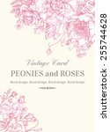 wedding invitation with roses... | Shutterstock .eps vector #255744628