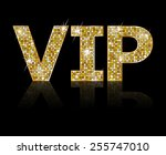 very important person   vip... | Shutterstock .eps vector #255747010