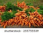 Fresh Carrots On A Roadside...