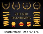set of gold vintage design... | Shutterstock .eps vector #255764176
