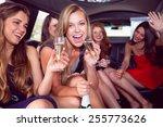 happy friends drinking... | Shutterstock . vector #255773626