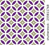 vintage geometric seamless... | Shutterstock .eps vector #255811768