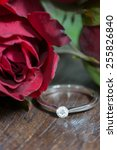 red rose and diamond ring | Shutterstock . vector #255826840