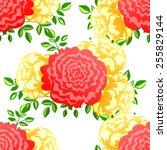 abstract elegance seamless... | Shutterstock .eps vector #255829144