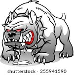 angry dog | Shutterstock .eps vector #255941590