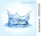 blue water splash  vector... | Shutterstock .eps vector #255951520
