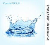 blue water splash  vector... | Shutterstock .eps vector #255951526