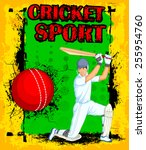 player playing game of cricket... | Shutterstock .eps vector #255954760