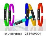 fitness bracelet | Shutterstock . vector #255969004