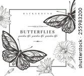 vector card with butterflies... | Shutterstock .eps vector #255983200