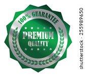 green silver metallic premium... | Shutterstock . vector #255989650