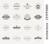 retro vintage premium quality... | Shutterstock .eps vector #255993880