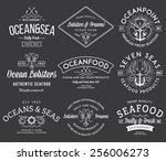 white on black seafood labels... | Shutterstock .eps vector #256006273