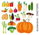 vegetables vector illustration | Shutterstock .eps vector #256071850