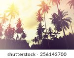 Small photo of Tropical jungle background with palm tree silhouettes at sunset. Vintage effect.