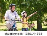 happy grandmother with her... | Shutterstock . vector #256144933