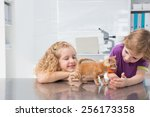 smiling owners petting their... | Shutterstock . vector #256173358