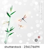 bamboo branch and three... | Shutterstock .eps vector #256176694