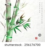 card with green bamboo in sumi... | Shutterstock .eps vector #256176700