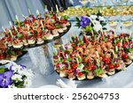 catering services background... | Shutterstock . vector #256204753