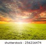 green field blue sky and sun.  | Shutterstock . vector #256216474