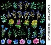watercolor vector set with... | Shutterstock .eps vector #256230976