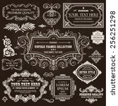 vector vintage collection ... | Shutterstock .eps vector #256251298