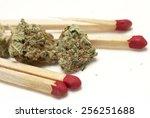 marijuana  | Shutterstock . vector #256251688