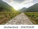 winding road background  | Shutterstock . vector #256252630
