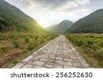 winding road background  | Shutterstock . vector #256252630