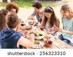 happy friends in the park... | Shutterstock . vector #256323310