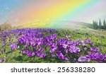 spring  in march  april  may... | Shutterstock . vector #256338280