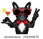 French Bulldog Dog Holding...