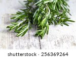bunch of fresh rosemary on a... | Shutterstock . vector #256369264