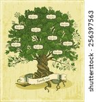 Stock vector genealogical tree on old paper background family tree in vintage style pedigree 256397563