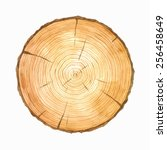 Tree Rings. Watercolour...