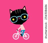 Black Cat On A Bicycle