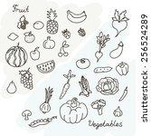vector illustration of fruits... | Shutterstock .eps vector #256524289