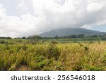 Mountains and wilderness on the north shore, St. Kitts - stock photo