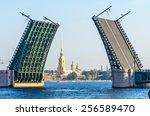 Saint Petersburg Bridge Day