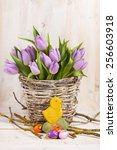lilac bunch of tulips on wooden ... | Shutterstock . vector #256603918