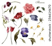 flowers and leaves  watercolor  ... | Shutterstock . vector #256614670