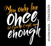 you only live once  but if you... | Shutterstock .eps vector #256620634