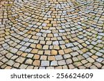 Small photo of paving