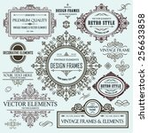 vector vintage collection ... | Shutterstock .eps vector #256633858