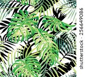 hand drawn tropical plants... | Shutterstock .eps vector #256649086
