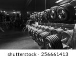 weights. shallow depth of... | Shutterstock . vector #256661413