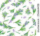 Seamless Pattern With Rosemary...