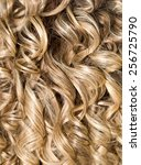 curly hair. hairdressing. wave .... | Shutterstock . vector #256725790